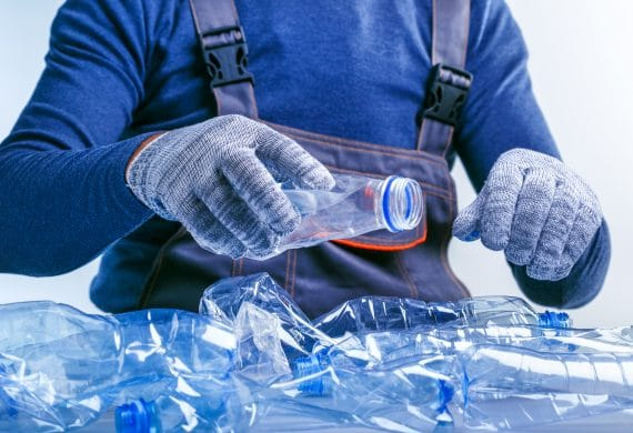 Albert&Co Management de transition environnement